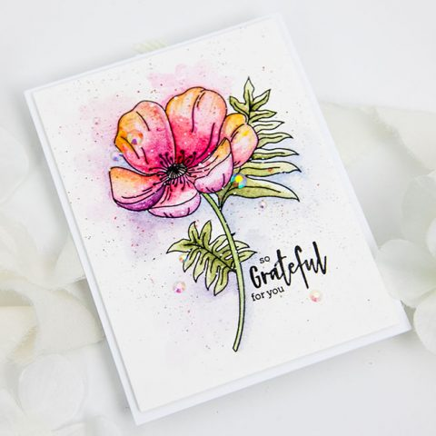 Altenew Paint-A-Flower: Poppy Release Blog Hop