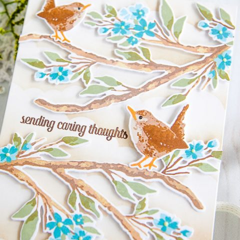 The Greetery June Release: Robins & Wrens on Blooming Branches